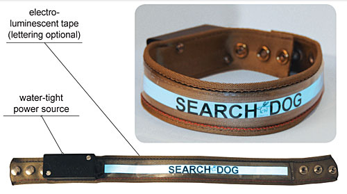 Dog Safety Collar