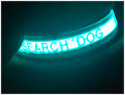 Search Dog Collar Glow